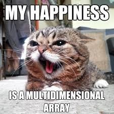 Lil Bub Meme - my happiness is a multidimensional array lil bub quickmeme