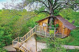 wonderbox telephone siege social nuit pour 2 en cabane dans les arbres à défiplanet à dienné 84