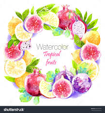 colorful round frame of watercolor pomegranate figs lemon dragon