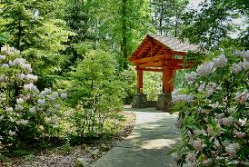Raleigh Botanical Garden Botanical Gardens In Raleigh Nc Home Decoration Ideas Designing