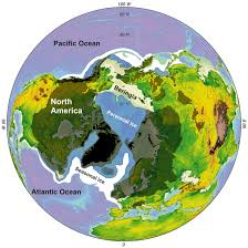 Which Parts Of The Earth Were Covered By Ice Sheets by Polar Bears Barely Survived The Sea Ice Habitat Changes Of The
