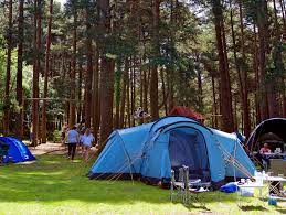 Campgrounds Near Six Flags New England Find Cheap Tent Camping Sites In South East England Pitchup Com