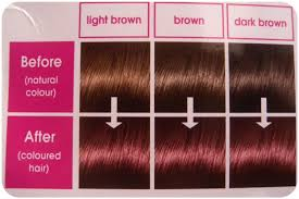 mahogany hair color chart my hair story l oreal casting creme gloss review miss