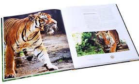 Photo Coffee Table Books Coffee Table Books Great Pictures And Succinct Text Star2