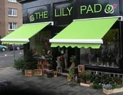 Awnings For Shops 75 Best Awnings And Canopies Images On Pinterest Canopies Shops
