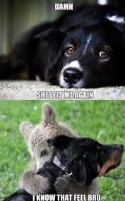 Sad Panda Meme - sad panda meme