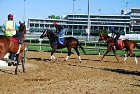 Kentucky how far can a horse travel in a day images Travel louisville ky barns and backside tour electric during jpg