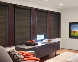 Window Tre Blackout Window Treatments Contemporary Home Theatre