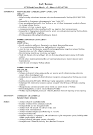 consulting resume exles workday consultant resume sles velvet