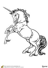 image d u0027une licorne fantastique à colorier coloriages de fées