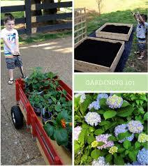 flower gardening 101 vegetable gardening 101 part 1 amber housley marketing coach