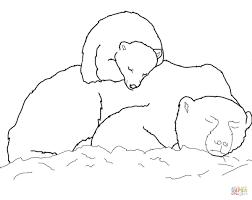 polar bear color page funycoloring