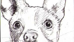 sketch of a strange looking dog one drawing daily