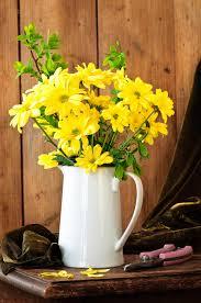 Display Vase Yellow Flower Display Vase Royalty Free Stock Images Image 15984329