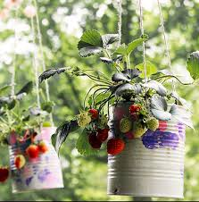 diy hanging strawberry planter u2014 totally green crafts