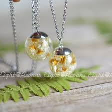 everlasting daisy terrarium necklace u2013 eight acorns