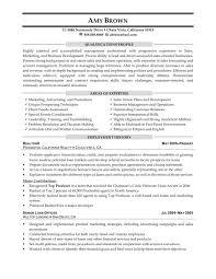 sample marketing consultant resume chronological resume sample