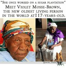 Sugar Brown Meme - she once worked on a sugar plantation meet violet mosse brown the