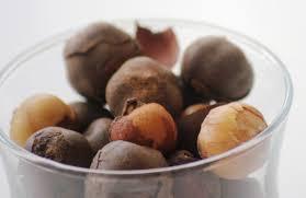cuisiner le fruit de l arbre à l olum bobimbi country onions rondelles huyomi écorce et