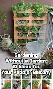 Patio Container Garden Ideas Gardening Without A Garden 10 Ideas For Your Patio Or Balcony