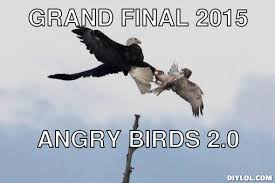 Dolan Meme Generator - what kind of bird is this meme generator best bird 2018