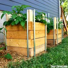 short on garden space then a potato tower or potato box may be