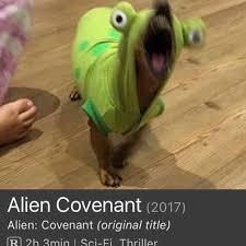 Alien Meme - top 27 alien memes quotes and humor