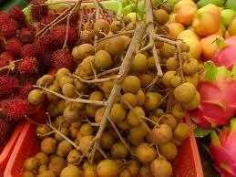 Jungalow Maui Jungalow Dragon Eye Fruit And Fruit Snatchers