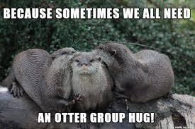 Otter Memes - gwendlyn s otter hug meme on imgur