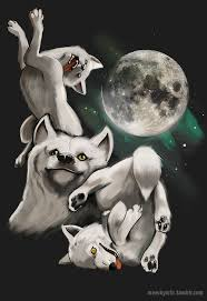 Three Wolf Moon Meme - 16 best three wolves and moon shirt images on pinterest a wolf