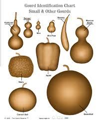 gourd seed list