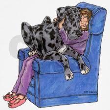 nmrl chair hug hooded sweatshirt gentle and animal