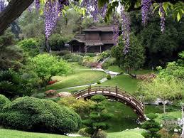beautiful flower garden in japanese style
