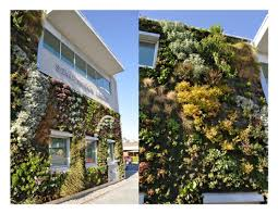 Vertical Wall Garden Plants by The Semiahmoo Library U0027s Larger Than Life Living Wall Features Over
