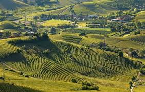 unesco si e i paesaggi vitivinicoli di langhe roero e monferrato patrimonio