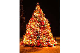 how many christmas lights per foot of tree why this family strings 1 100 lights on a 40 foot tree reader s digest