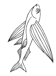 flying fish coloring pages download print flying fish