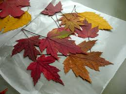 september craft ideas for seniors find craft ideas