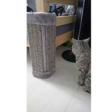 Wall Chair Protector 20 Cat Scratch Pad Wall Corner Standing Protect Sofa Bed Chair