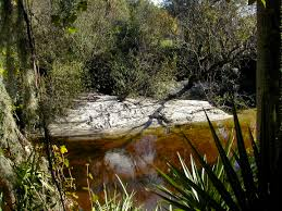 Florida State Parks Camping Map by Little Manatee River State Park Florida Hikes