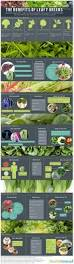 236 best foods with benefits images on pinterest health benefits