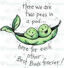 two peas in a pod picture frame picture frame two peas in a pod friendship rubber sts regarding