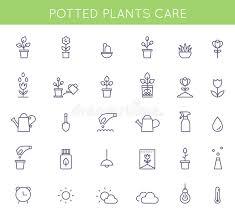 cura giardino icone e pittogrammi di istruzioni di cura delle piante in vaso e