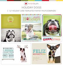 card templates for photoshop holiday card collection holiday dog photoshop templates for holiday card collection holiday dog photoshop templates for pet photographers