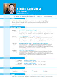 Openoffice Resume Templates Functional Resume Template Logical Resume Mycvfactory