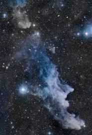 apod 2015 october 30 the witch head nebula