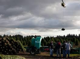 yule loggers willamette week