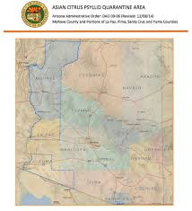 Yuma Az Map Tiny Wasp Carries Heavy Burden U2013 Hopes Of Halting Devastating
