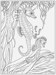coloring pages under the sea