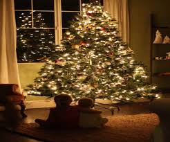live christmas trees best images collections hd for gadget